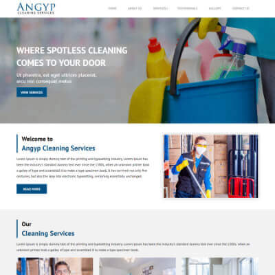 Angyp Cleaning Services